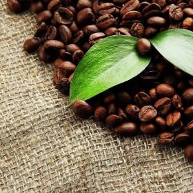Кофеин в косметологии